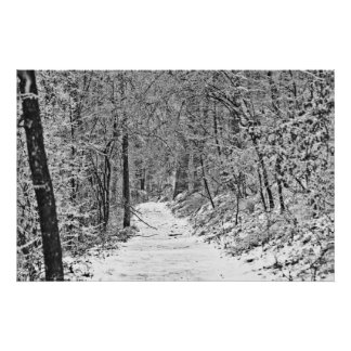 Snowfall on the Forest Trail B&W Poster