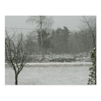 Snowfall Postcard