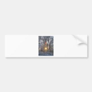 Snowfall Sunrise CricketDiane Snowy Forest Sun Bumper Stickers
