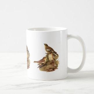 Snowfinch Coffee Mug