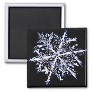 Snowflake 9 2 inch square magnet
