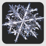 Snowflake 9 square stickers