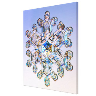Snowflake Gallery Wrapped Canvas