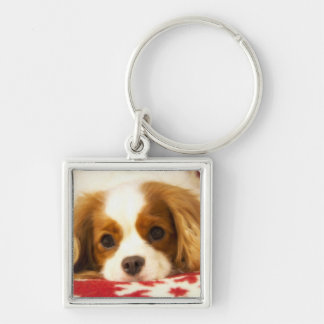Snowflake Cavalier King Charles Spaniel Silver-Colored Square Keychain