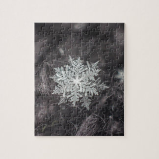 Snowflake Layers - Macro Puzzles