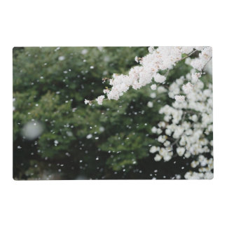Snowflake like cherry blossoms placemat