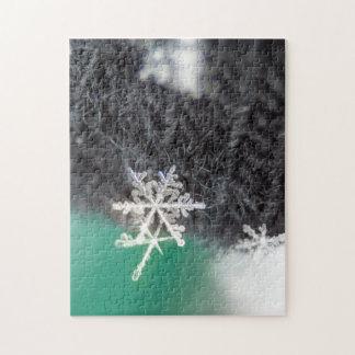 Snowflake macro photo puzzle