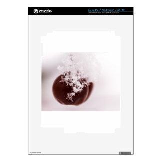 Snowflake on Crab Apple Skin For iPad 3
