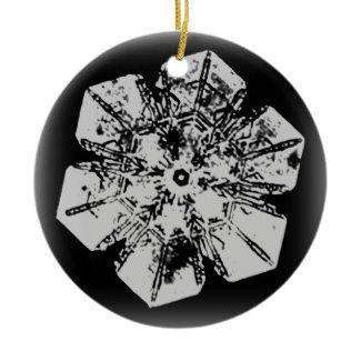 Snowflake Ornament 1 ornament