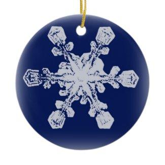 Snowflake Ornament 10 ornament