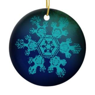 Snowflake Ornament 2 ornament