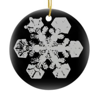 Snowflake Ornament 3 ornament