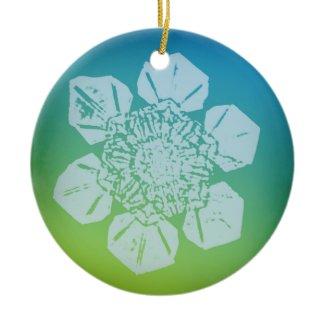 Snowflake Ornament 5 ornament