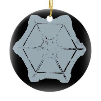 Snowflake Ornament 8 ornament