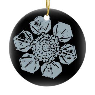 Snowflake Ornament 9 ornament