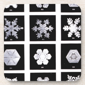 Snowflake Plates Weather Photography Beverage Coaster