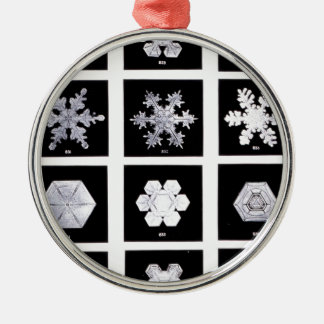 Snowflake Plates Weather Photography Metal Ornament