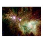 Snowflake Stars Postcard
