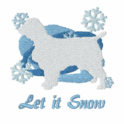 Snowflake Welsh Springer Spaniel