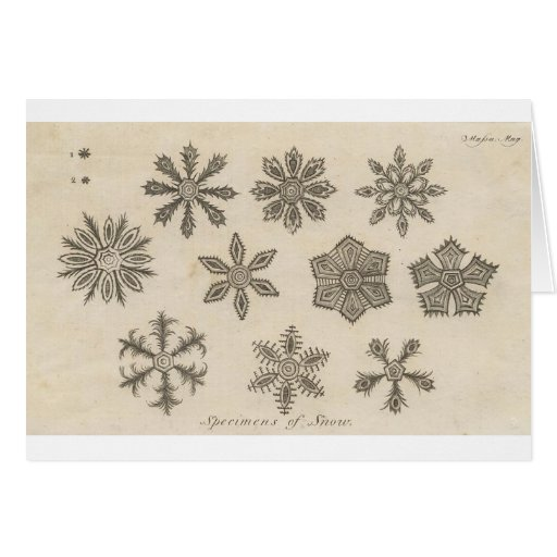 Snowflakes - 1791 cards