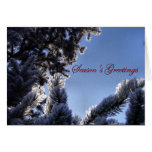 Snowflakes and Pine Tree Season's Greetings Stationery Note Card