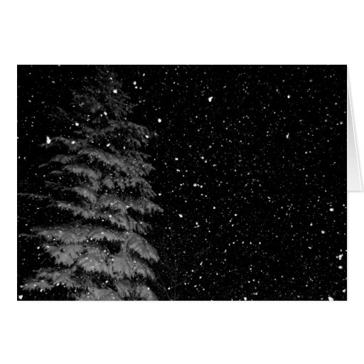 snowflakes at night  unique photograph card