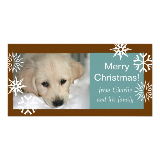 Snowflakes Dog Christmas Photo Cards Brown Blue
