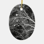 Snowflakes Photo Xmas Tree Keepsake Decorations Christmas Ornaments