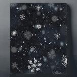 """snowflakes plaque<br><div class=""""desc"""">Cool snowflake products</div>"""