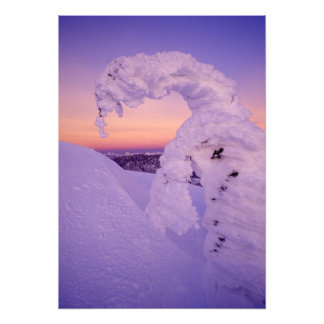Snowghost in the Whitefish Range at Twilight Photo Print