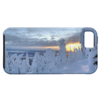 Snowghosts at sunset at Whitefish Mountain iPhone 5 Cases