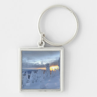 Snowghosts at sunset at Whitefish Mountain Keychain