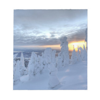 Snowghosts at sunset at Whitefish Mountain Scratch Pad