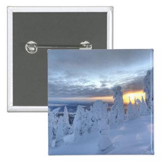 Snowghosts at sunset at Whitefish Mountain Pinback Button