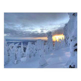Snowghosts at sunset at Whitefish Mountain Postcard