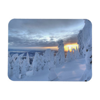 Snowghosts at sunset at Whitefish Mountain Rectangle Magnets