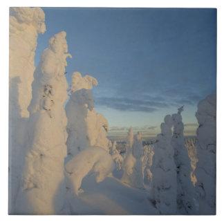 Snowghosts en la puesta del sol en la montaña 2 de azulejo cuadrado grande