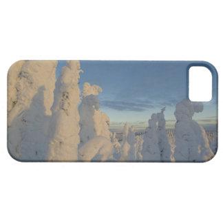 Snowghosts en la puesta del sol en la montaña 2 de iPhone 5 Case-Mate fundas