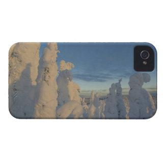 Snowghosts en la puesta del sol en la montaña 2 iPhone 4 Case-Mate cárcasa