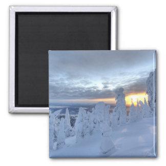 Snowghosts en la puesta del sol en la montaña del imanes para frigoríficos