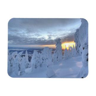 Snowghosts en la puesta del sol en la montaña del  iman rectangular