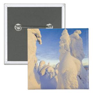 Snowghosts en la puesta del sol en la montaña del  pin cuadrado