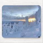 Snowghosts en la puesta del sol en la montaña del  tapete de ratón