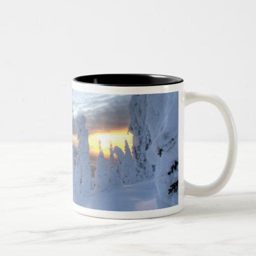 Snowghosts en la puesta del sol en la montaña del  tazas de café