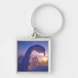 Snowghosts in the Whitefish Range of Montana Keychain