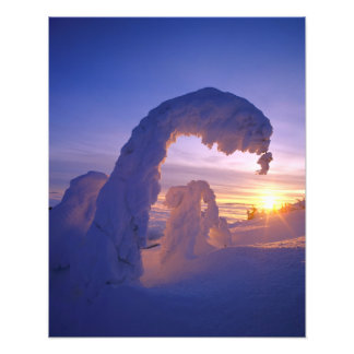 Snowghosts in the Whitefish Range of Montana Photo Print