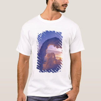Snowghosts in the Whitefish Range of Montana T-Shirt