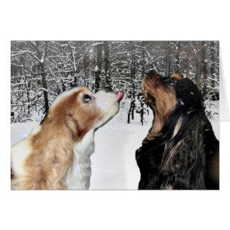 Snowing On Cavalier King Charles Spaniel Card