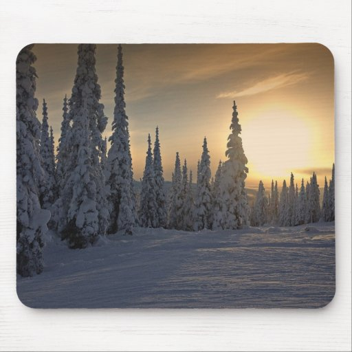 Snowing Winter Morning Mouse Pads