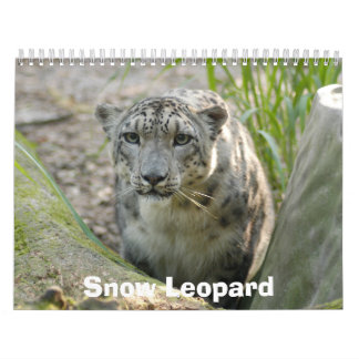 SnowLeopardBCR012 onza Calendario De Pared